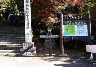 犬山寂光院の境内へと登る階段
