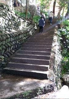 本堂のある山上へ続く階段