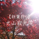 犬山寂光院の紅葉狩り